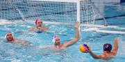 Vaterpolo: Barakude potopile Crnu Goru | Domoljubni portal CM | Sport