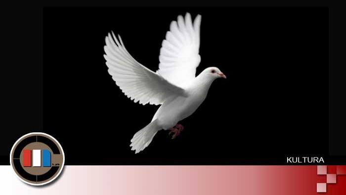 VUKOVARSKA GOLUBICA | Domoljubni portal CM | Moj kutak