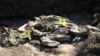 Marinci: Pronađeni posmrtni ostaci četiriju osoba