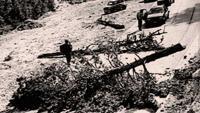17.8.1990. – hrvatski Srbi započeli oružanu pobunu 'balvan revolucijom' | Domoljubni portal CM | U vihoru rata