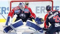 EBEL: Sjajna pobjeda Medveščaka protiv Innsbrucka | Domoljubni portal CM | Sport