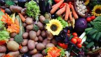 Povremeni post dobar je za zdravlje, ali nije za svakoga | Domoljubni portal CM | Zdravlje